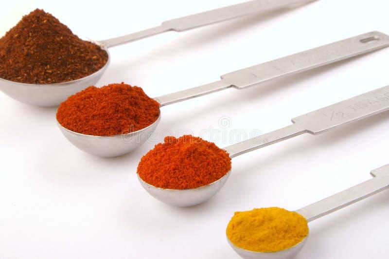 kryddor för 2 mått royaltyfri foto
