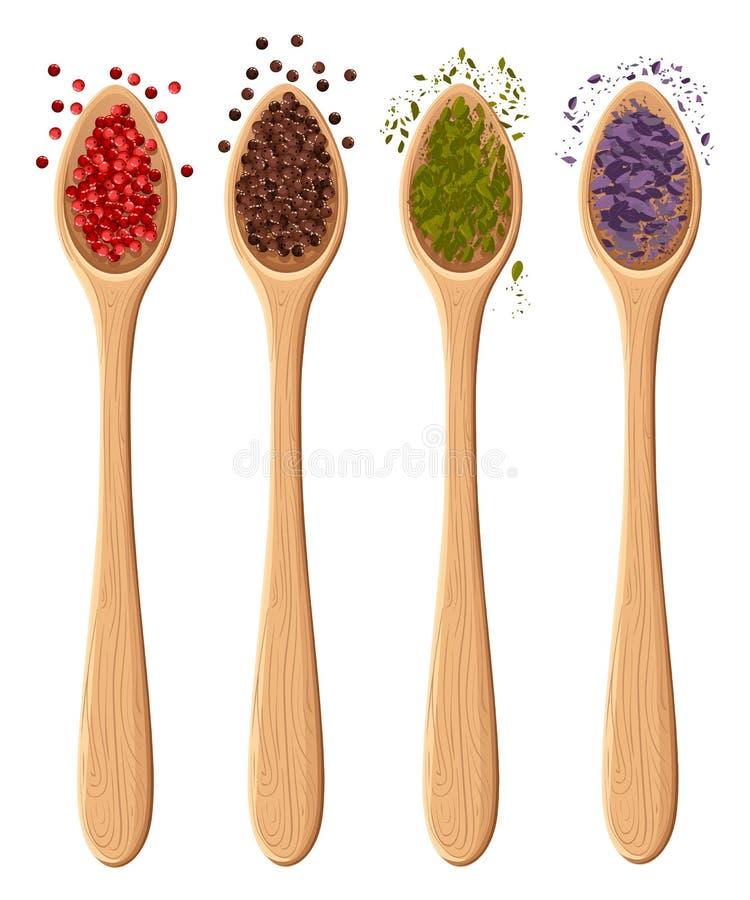 Kryddor i skedarna som isoleras på den vita foto-realistiska illustrationen, planlägger beståndsdelen i kulinariskt och att laga  royaltyfri illustrationer