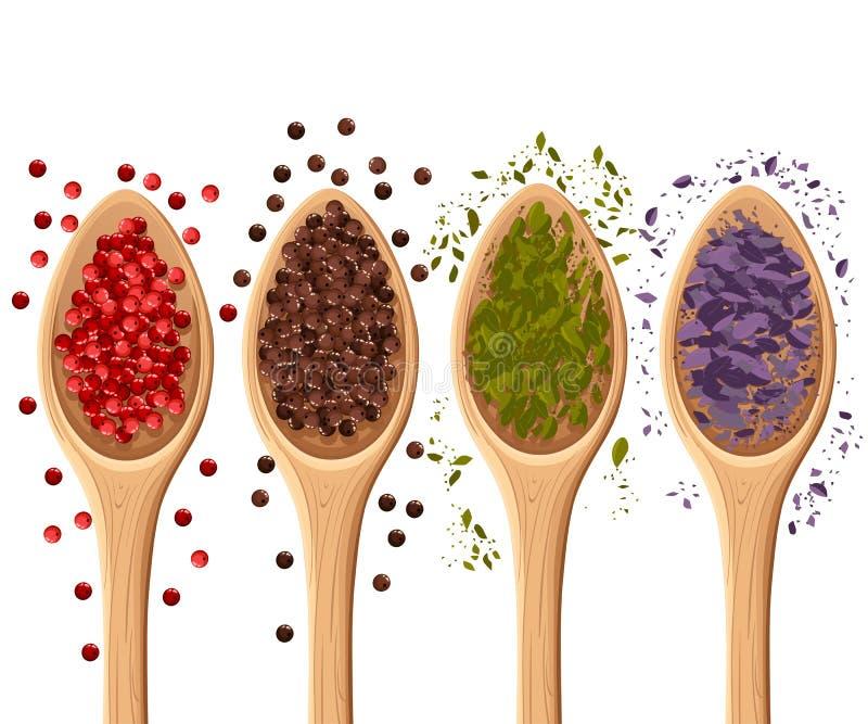 Kryddor i skedarna som isoleras på den vita foto-realistiska illustrationen, planlägger beståndsdelen i kulinariskt och att laga  vektor illustrationer