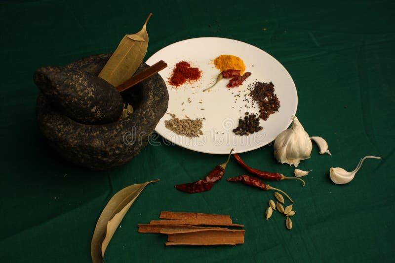 Kryddor & x28; Masala& x29; royaltyfri fotografi