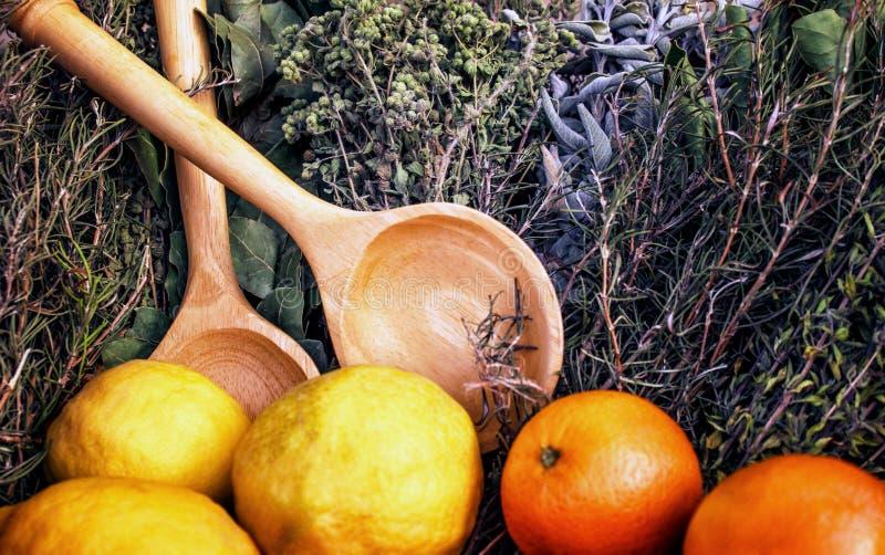 Kryddor och örtar Apelsiner och citroner Uppsättning av den medeltida husmor royaltyfri foto