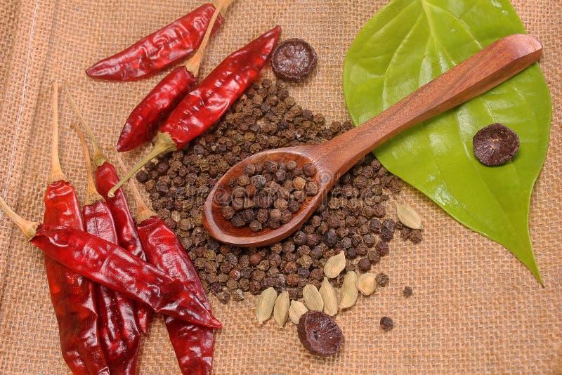 Kryddor och örtar belägger med metall in bunkar och träskedar Mat- och kokkonstingredienser arkivfoto