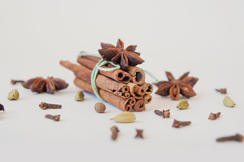 Kryddor och örtar Mat- och kokkonstingredienser Kanelbruna pinnar, anisstjärnor, kryddnejlika på vit bakgrund royaltyfria bilder