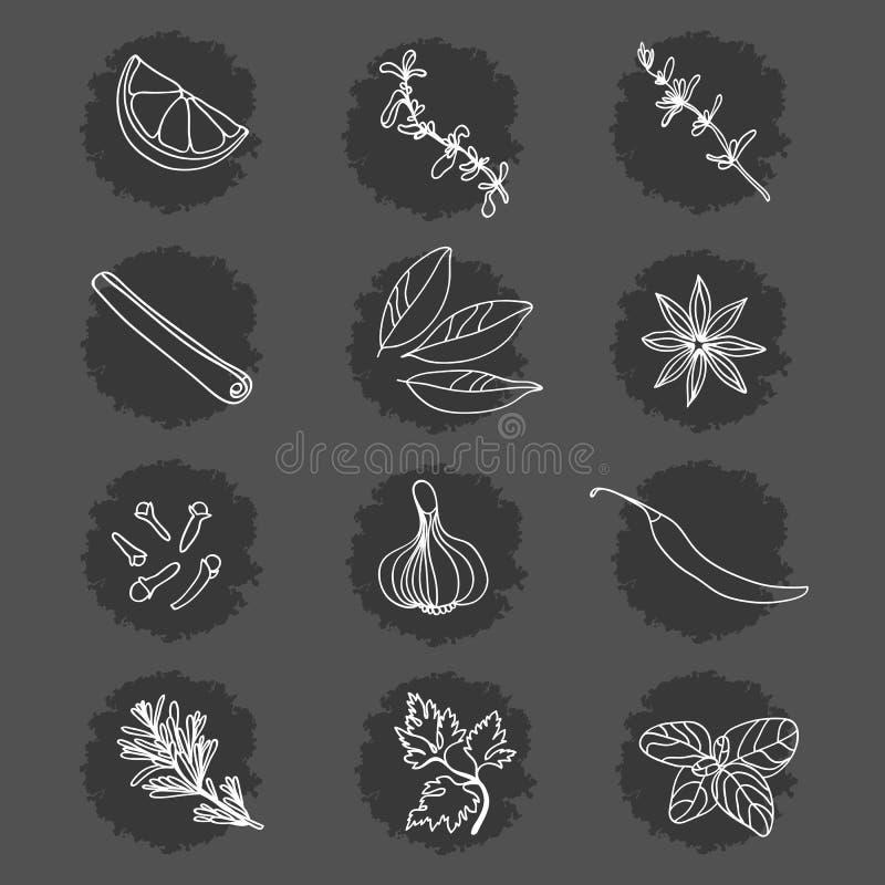 Kryddor och örtar Samling Citron mejram, timjan, kanel, lagerblad, stjärnaanis, kryddnejlikor, vitlök, peppar, rosmarin, persilja stock illustrationer