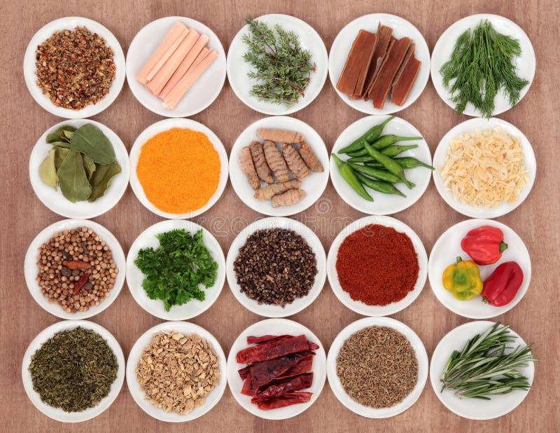 Kryddor och örter arkivbilder