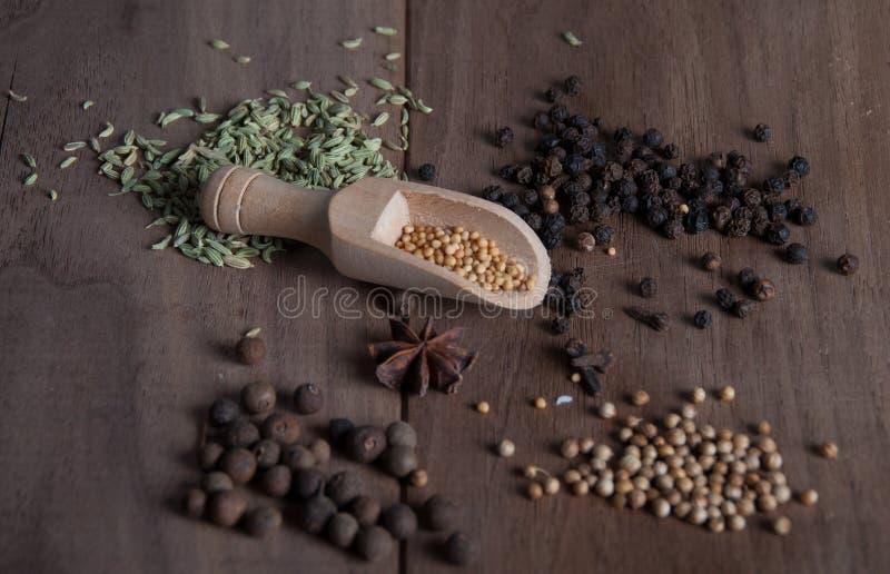 Kryddor och frö arkivfoton