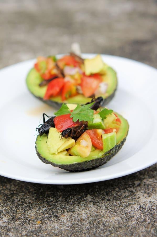 Krykiet Ceviche słuzyć w Avocado zdjęcia royalty free