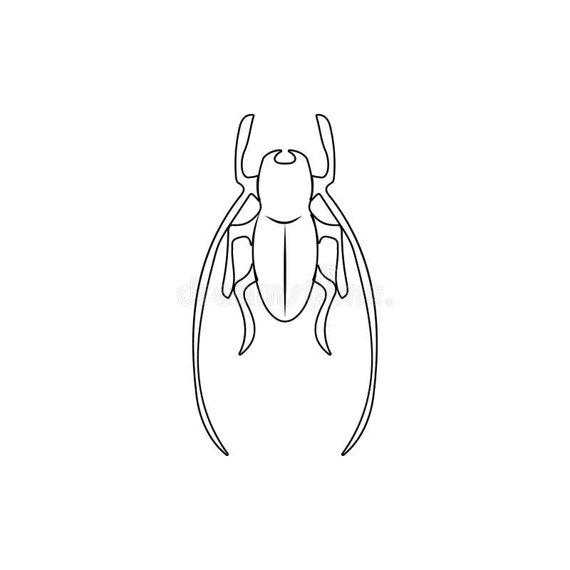 Krykiet ikona Element insekt dla mobilnego pojęcia i sieci apps ikony Cienka kreskowa ikona dla strona internetowa projekta i roz ilustracji