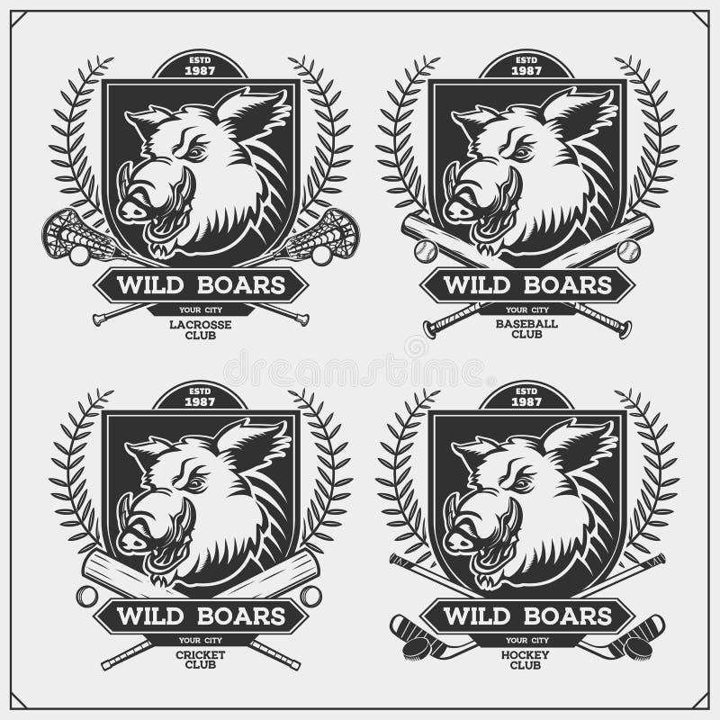 Krykiet, lacrosse, baseball, hokej etykietki i logo, i Sporta klubu emblematy z dzikim knurem Druku projekt dla koszulki ilustracja wektor
