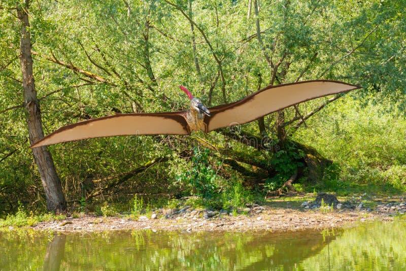 Kryptodrakon latający dinosaur nad stawem zdjęcia royalty free