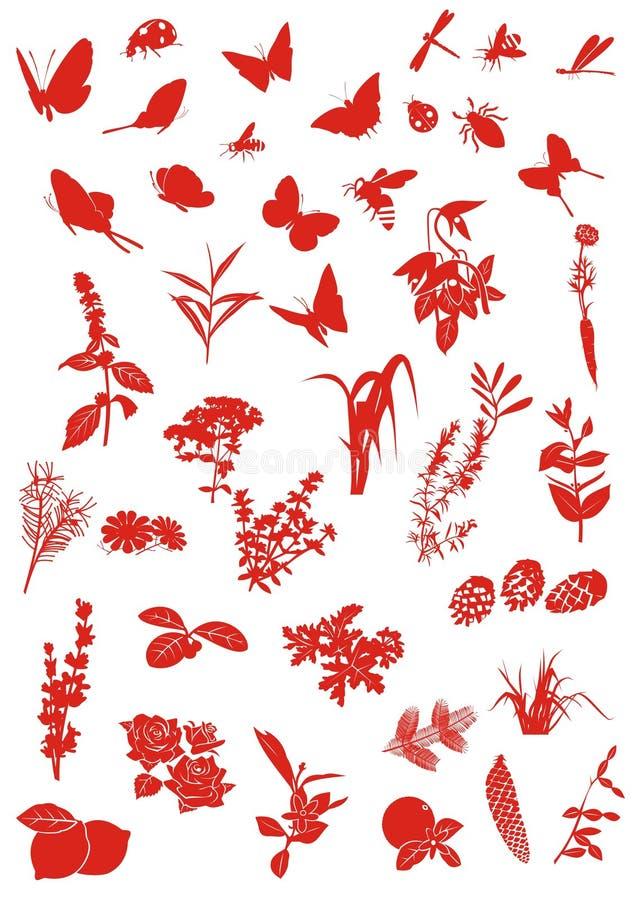 krypväxter stock illustrationer