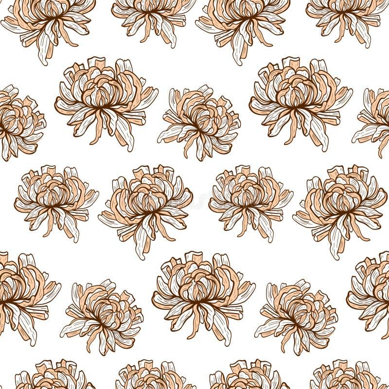 Krysantemum royaltyfri illustrationer