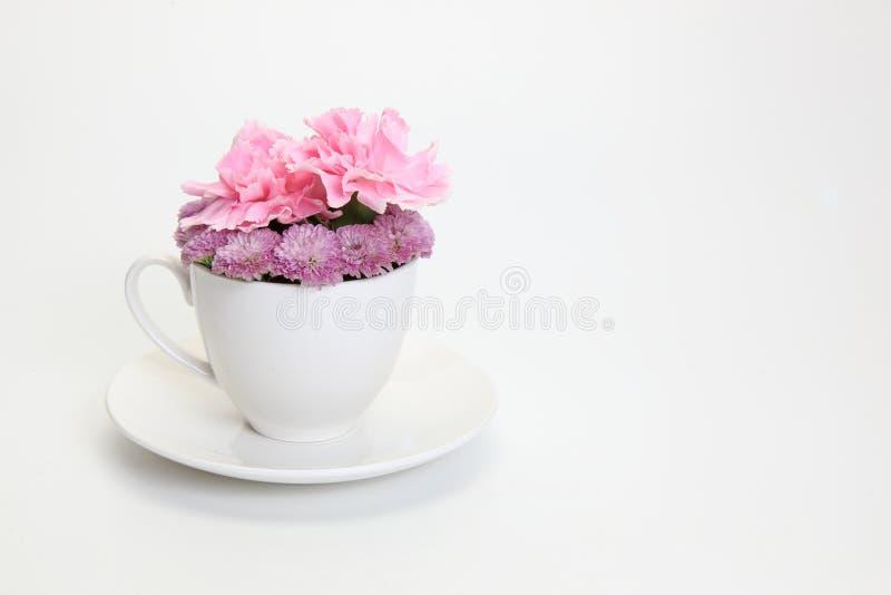 Krysantemum och nejlika i kaffekoppen royaltyfri foto