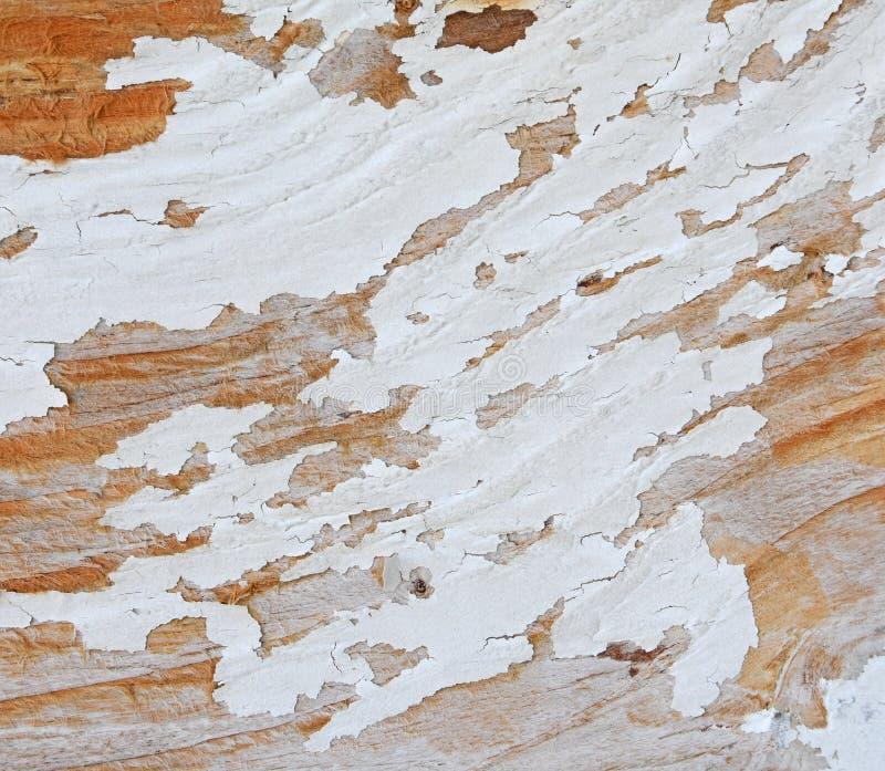 Kryssfaner med flagig vit målarfärg arkivfoto