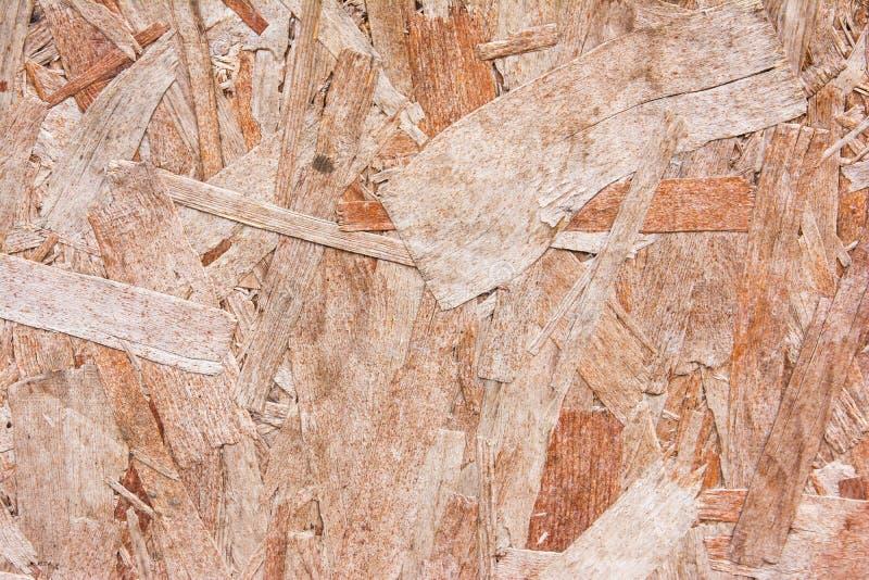 Kryssfanertextur med den naturliga modellen, wood korn f?r bakgrund royaltyfria foton