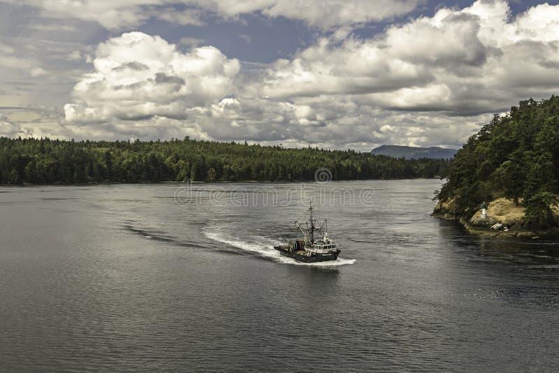 Kryssning från Vancouver till Victoria Island royaltyfria foton
