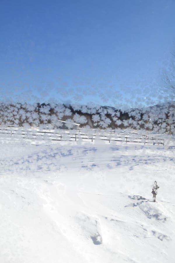 Krystaliczni płatki śniegu na okno 17 obrazy stock