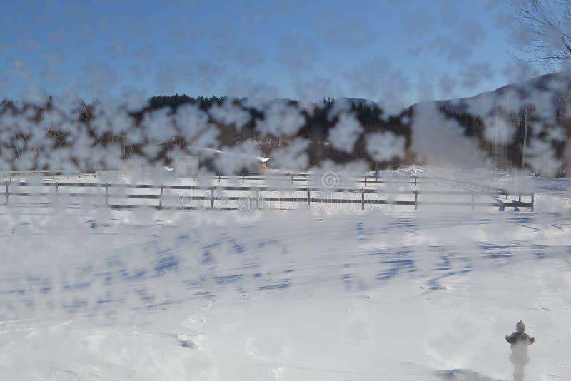 Krystaliczni płatki śniegu na okno 15a obrazy stock