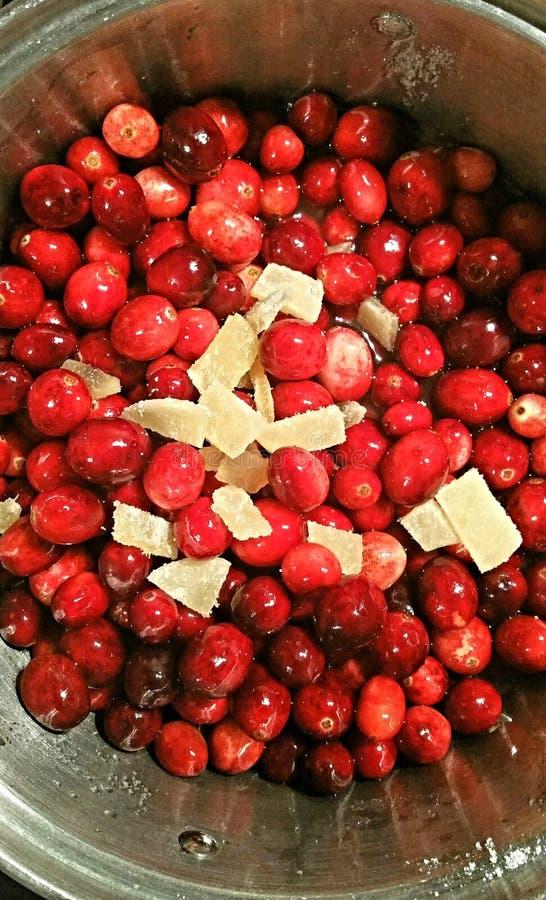 Krystalizujący cranberry i imbir obrazy royalty free
