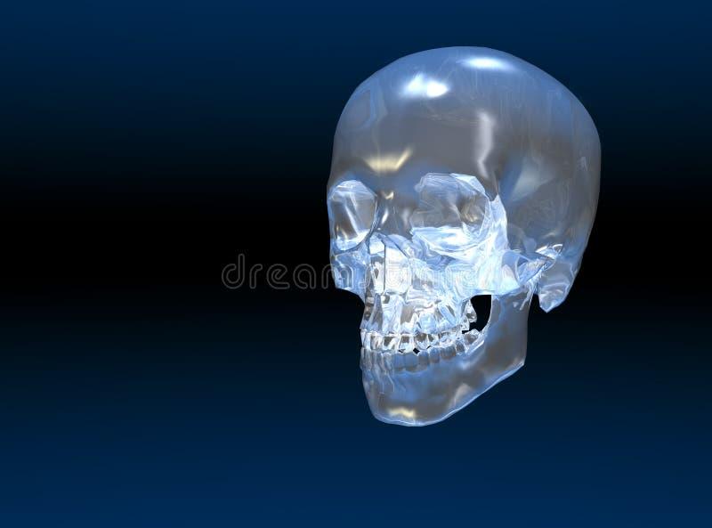 kryształowa czaszka royalty ilustracja