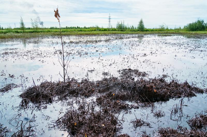 kryzysu ekologiczny środowiskowy fotografii zanieczyszczenie fotografia stock