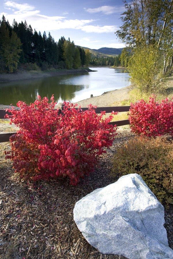 krzaków jeziora czerwień obraz stock