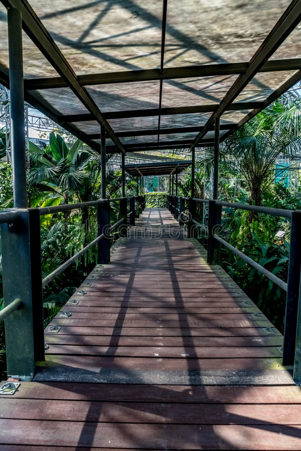 krzak footbridge refleksje river park zdjęcie stock