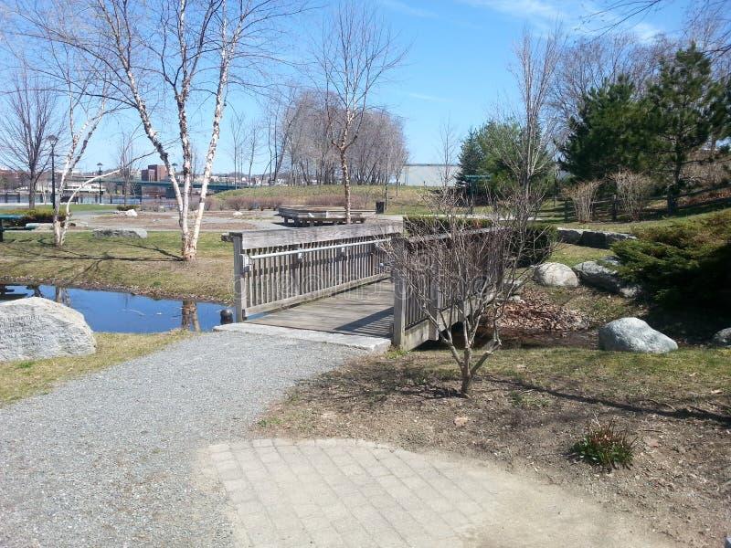 krzak footbridge refleksje river park obraz stock