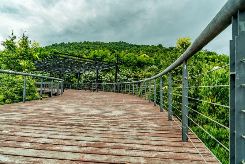 krzak footbridge refleksje river park zdjęcie royalty free