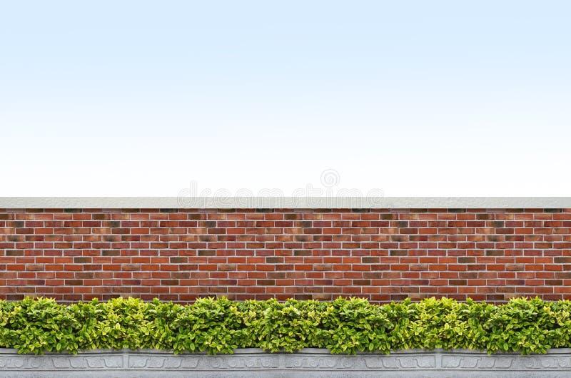 Krzaki i cegły ogrodzenie obrazy stock