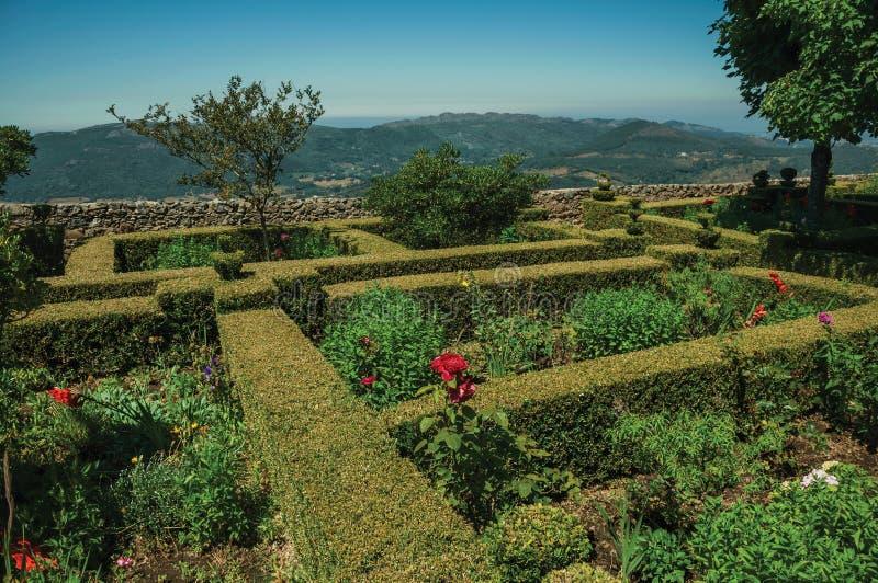 Krzaki w kwitnącym ogródzie obok Marvao Roszują zdjęcie stock