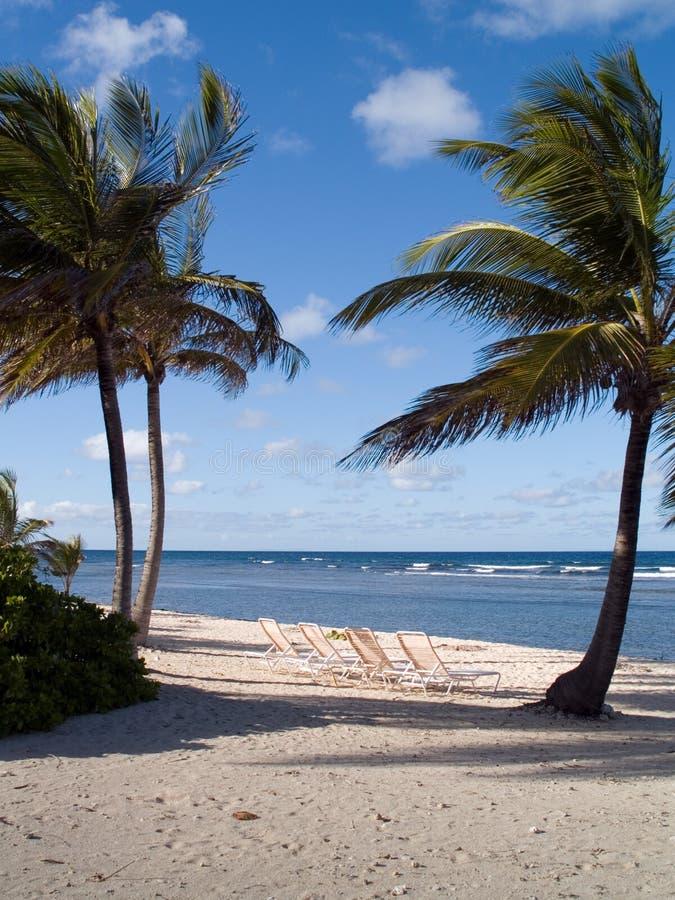 krzesło plażowi tropikalne fotografia royalty free