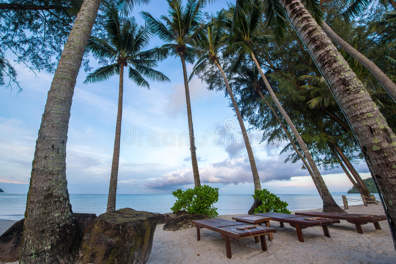 Krzesło przy plażą wśród kokosowego drzewa zdjęcia stock