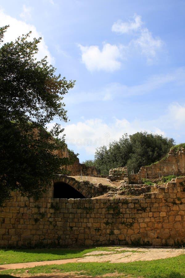Download Krzyżowów fortecy ruiny obraz stock. Obraz złożonej z wierza - 13338973