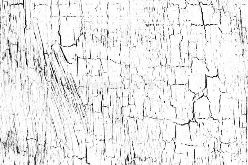 Krzywa, tekstura z farbą pękniętą na białym tle Rysy, pociągnięcia pędzlem Cienka, abstrakcyjna warstwa farby akryl, ilustracji