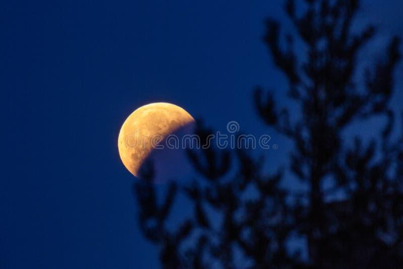 Księżyc zaćmienie 21 1 2019 obraz stock