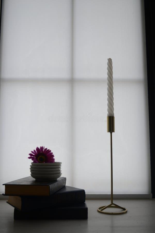 Książka i kwiat wzrastaliśmy zdjęcia stock