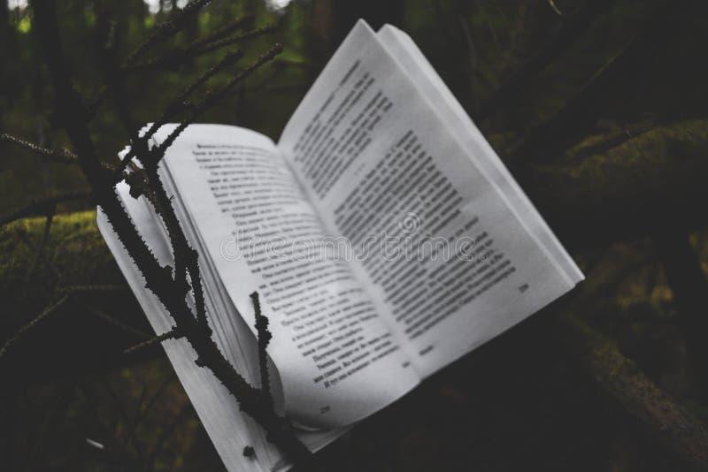 Książka i natura obrazy stock