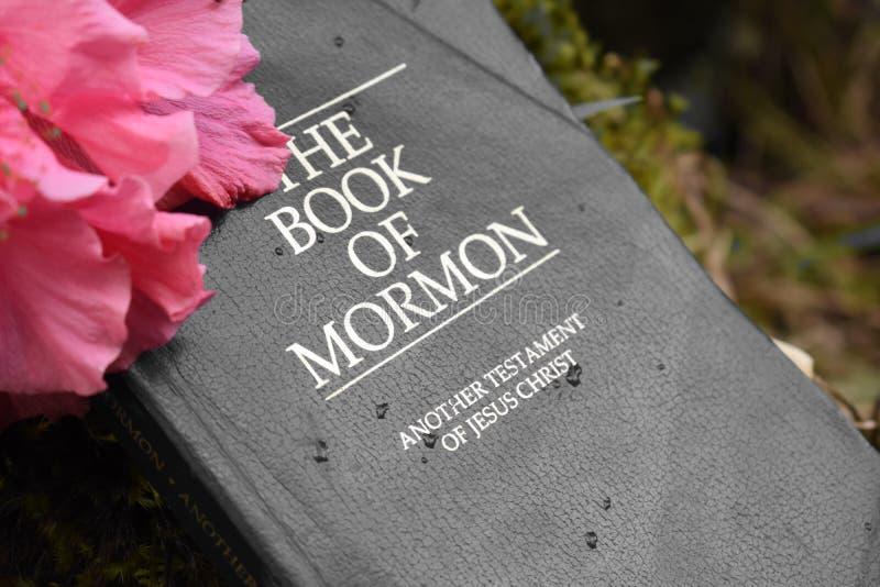 Książka mormon zdjęcia royalty free