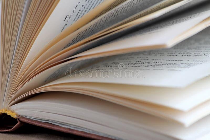 Książka na stole Czytelnicze książki zdjęcia royalty free