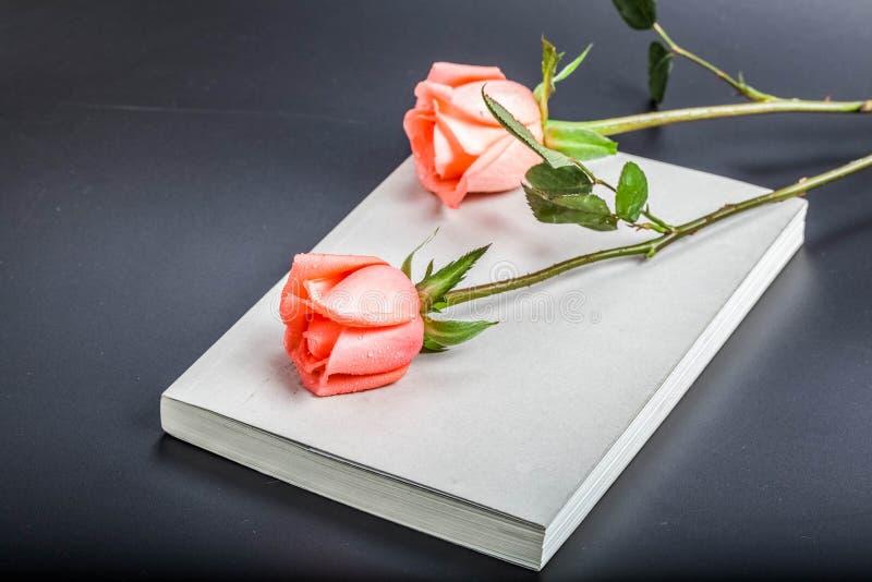 Książki i róży opowieść zdjęcia royalty free