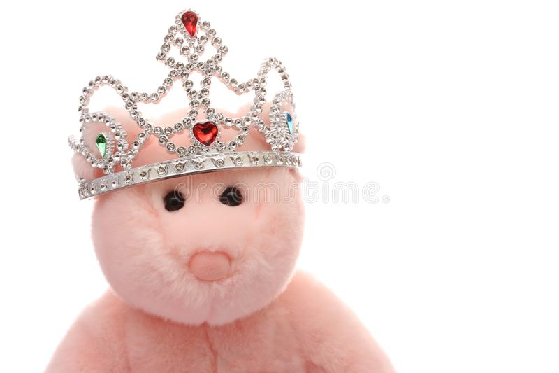 księżniczka bear obrazy royalty free
