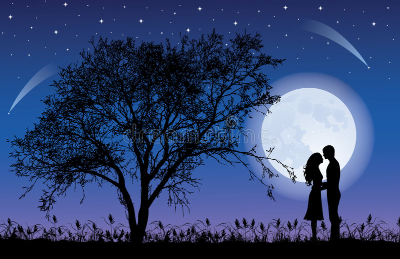 księżyc drzewo
