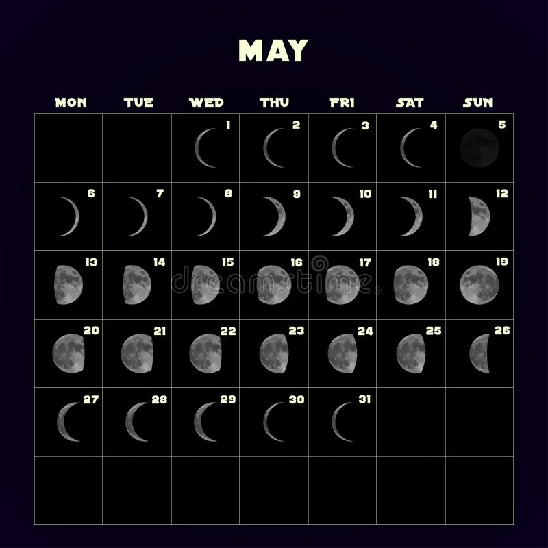 Księżyc faz kalendarz dla 2019 z realistyczną księżyc może wektor ilustracja wektor