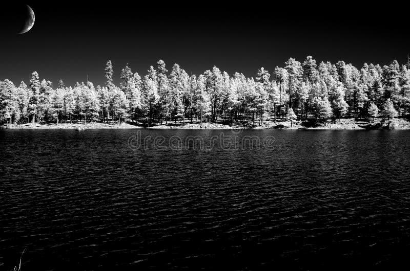 Księżyc i Las jezioro fotografia stock