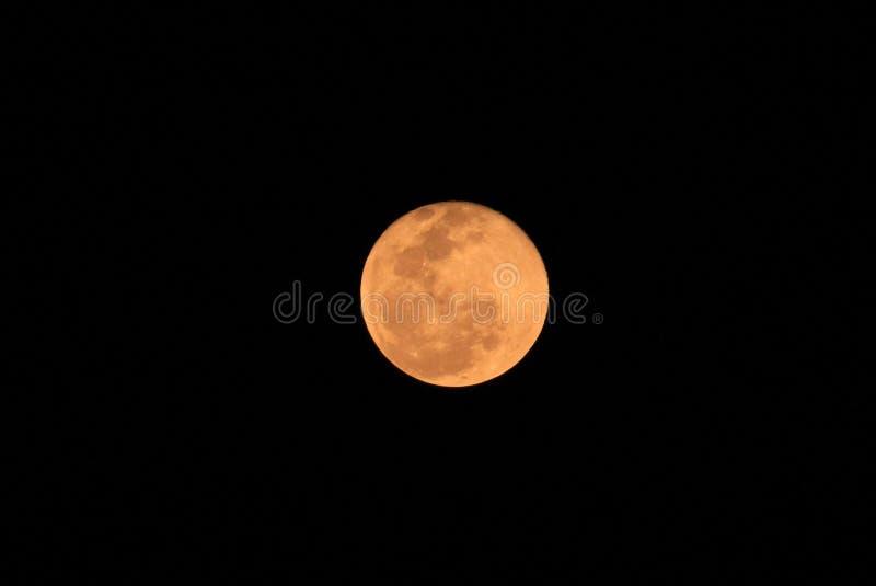 Księżyc pełen podczas zaćmienia Księżyca obraz stock