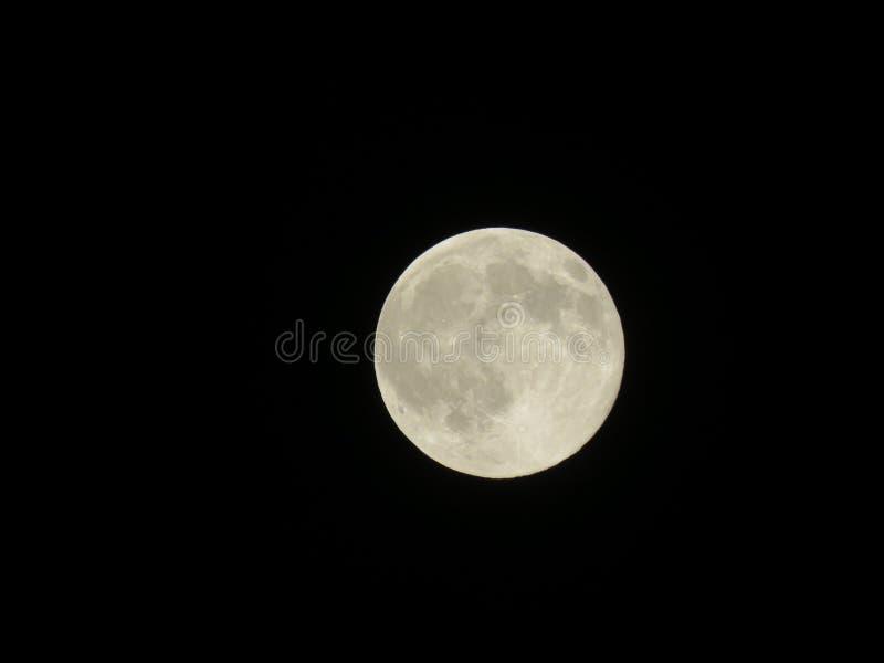 Księżyc w chmurnej nocy… obrazy royalty free