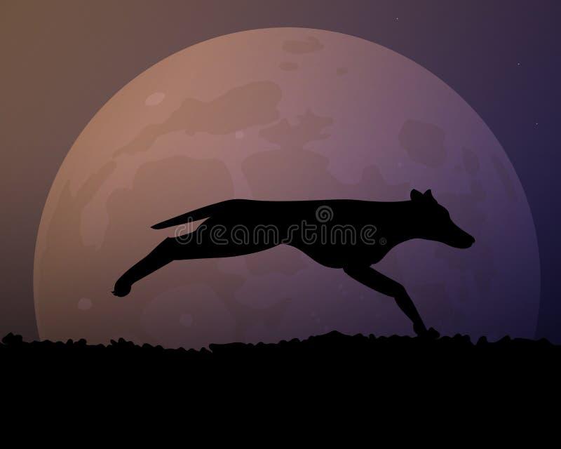Księżyc w nocy Sylwetka czarny dziki pies royalty ilustracja