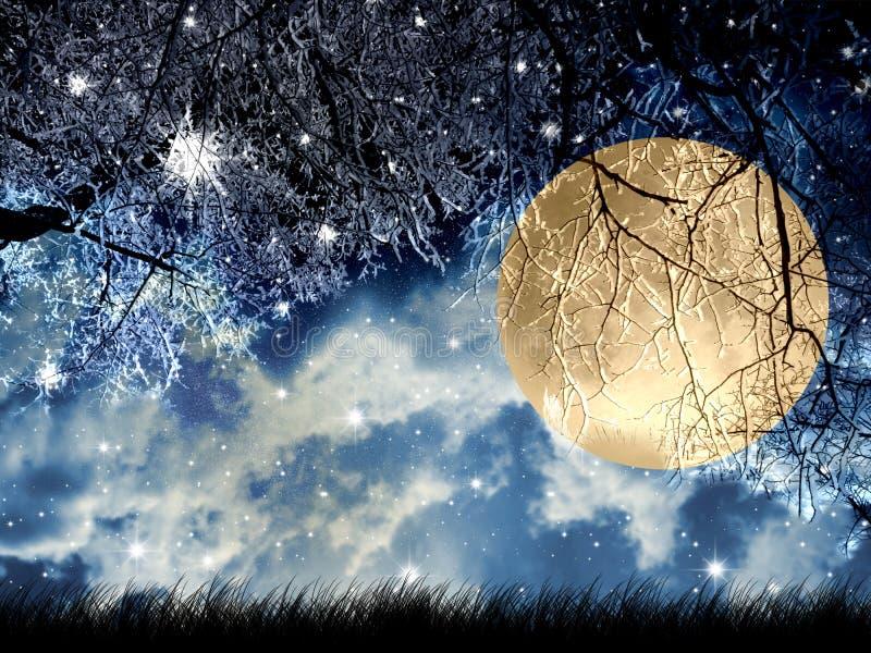 księżyc w pełni ilustracja wektor