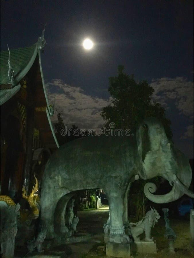 Księżyc w pełni noc fotografia stock